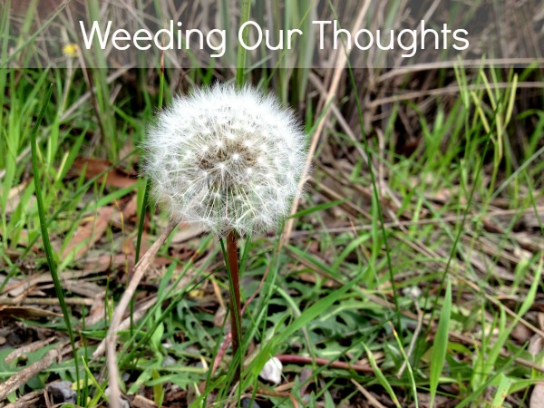 Weeding Our Thoughts | Home Heart Haven